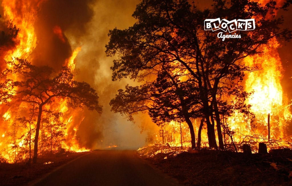 wildfire_3